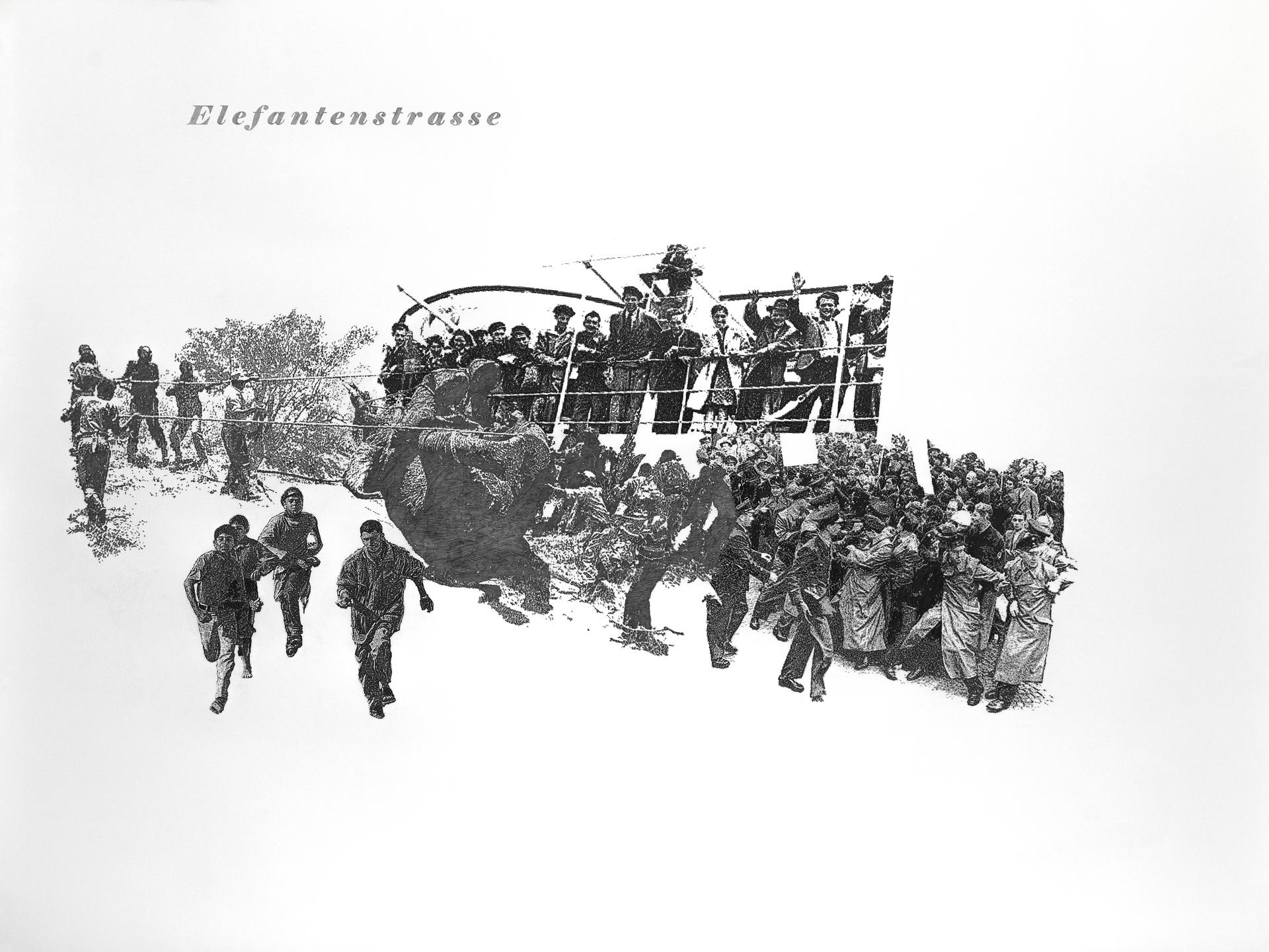 Elefantenstrasse, Bleistift auf Papier, 152cm x 200cm, 2013