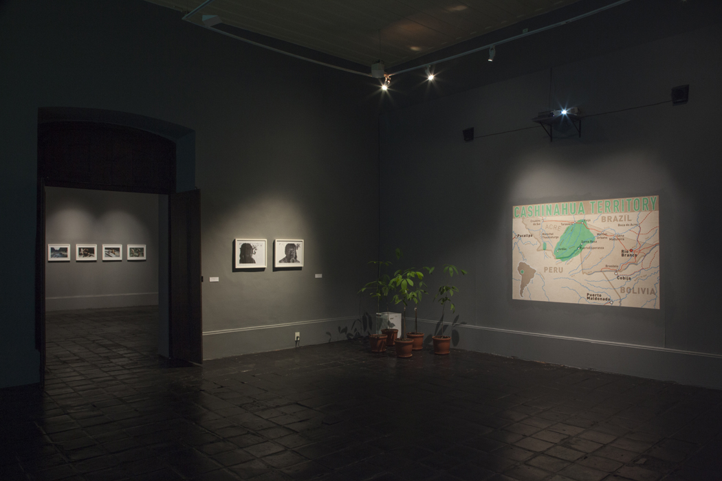 Saal 3: Migration Installation mit Karte und Kautschukpflanzen