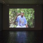 Saal 3: Migration Joaquim Cumapa erzählt die Geschichte vom lahmen Hirsch, Video, 2007